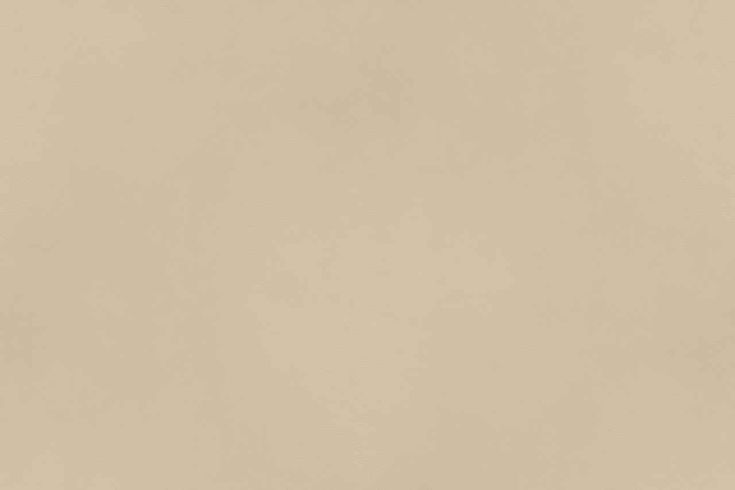 wildtextures-leather-Campo-cream