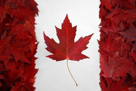 Canadian Flag out of Maple Leaves.