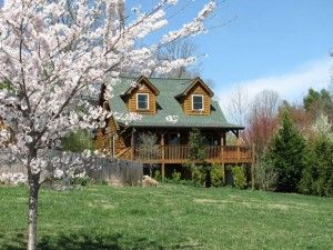 Barkwells-Snickers-cabin-page - dog friendly cabin rental in NC Dog friendly cabin rentals, 8 buildings available.