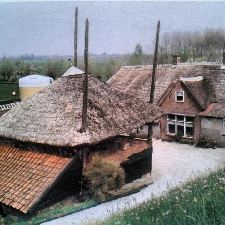 Oude boerderij, aan de Diefdijk.