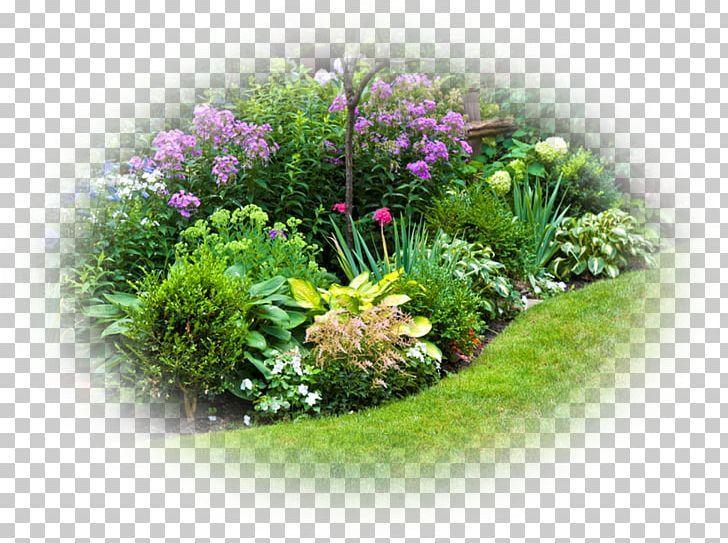 Perennial Garden Design Perennial Garden Plants Shade Garden Perennial Plant Png Annual Plant Back Garden Perennial Garden Design Annual Plants Shade Garden