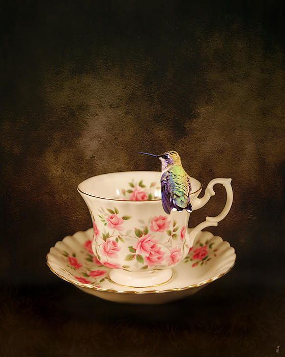 Tea Time With a Hummingbird - there\u0027s nothing sweeter than a nice cup of tea & 12 best HUMMINGBIRD DINNERWARE images on Pinterest | Hummingbird ...