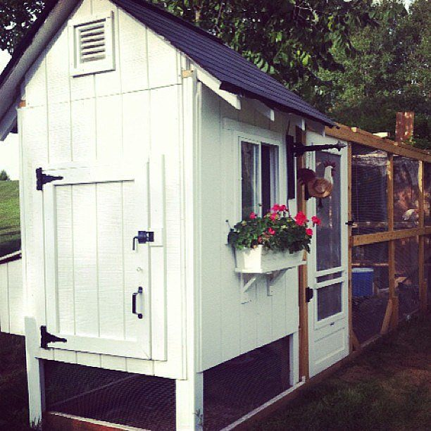 chicken coop Source: Instagram user thefarmlife1