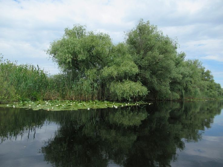 Time seems to have stopped along the quiet waterways of the Danube Delta, Romania.