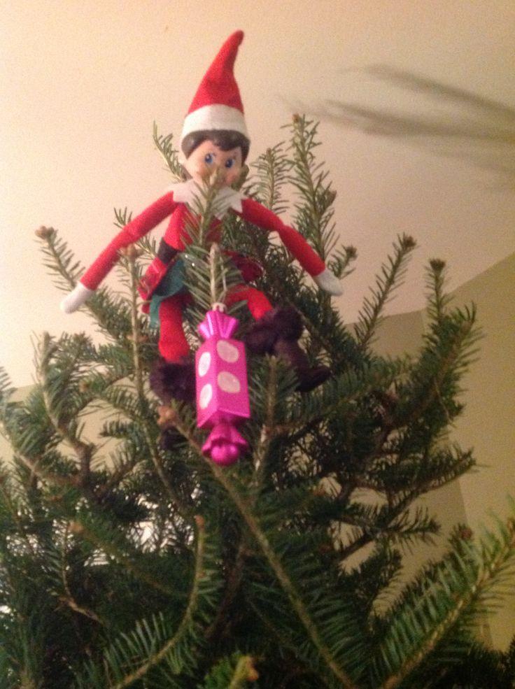 15 décembre: De toute évidence, on prenait trop de temps pour décorer le sapin... Flocon a décidé de nous aider!
