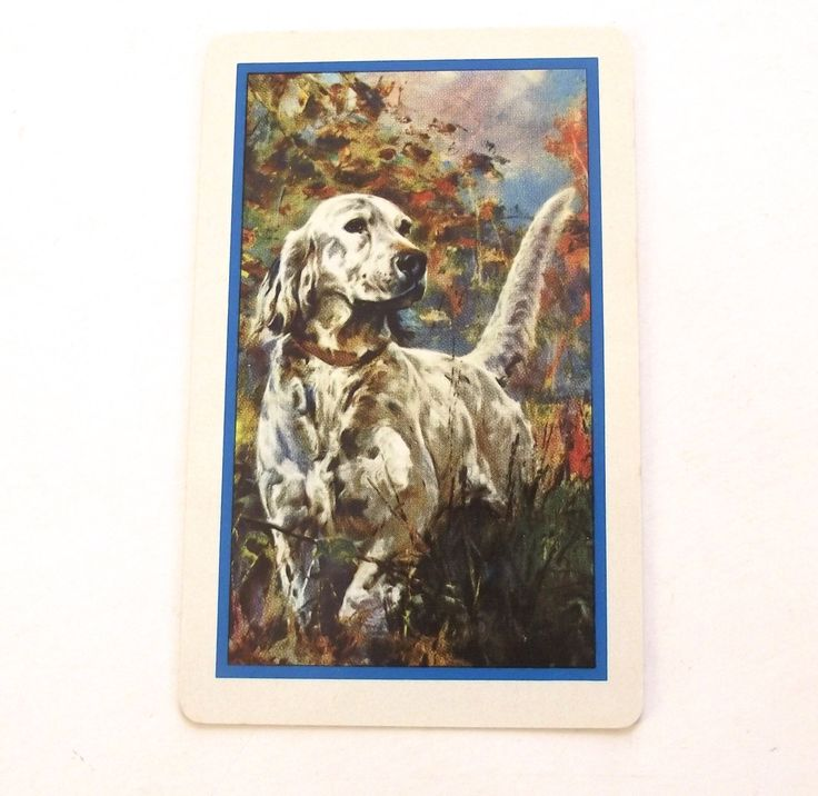Pointer Dog Pinochle Cards, Vintage Illustrated Playing Card from Wayne Dog Food by planetalissa on Etsy