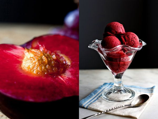 Plum Sorbet or Granita (can sub a different sweetener if you don't eat honey)