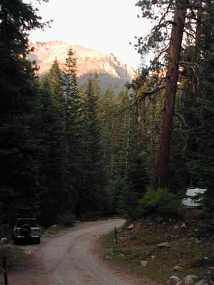 cold springs campground in sequoia national park