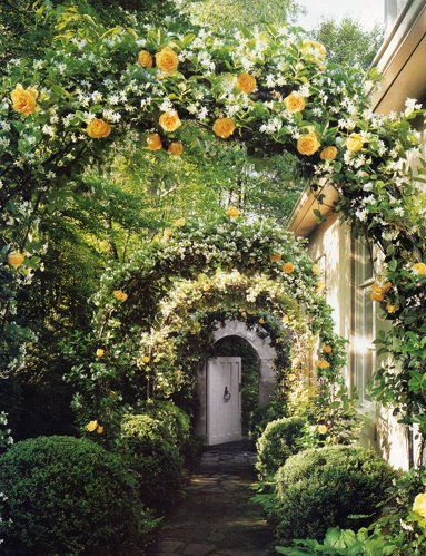 """Amazing rose and jasmine arbor.  My shade garden might receive enough light to incorporate this design.  First, I must check with my neighbors to see if we can """"combine"""" our side yards.  I think they will also love this idea :) :)."""