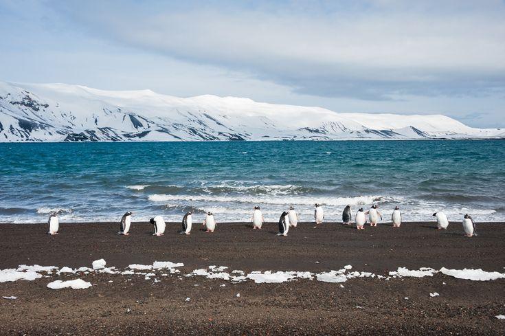 Deception Island – Southern Antarctica