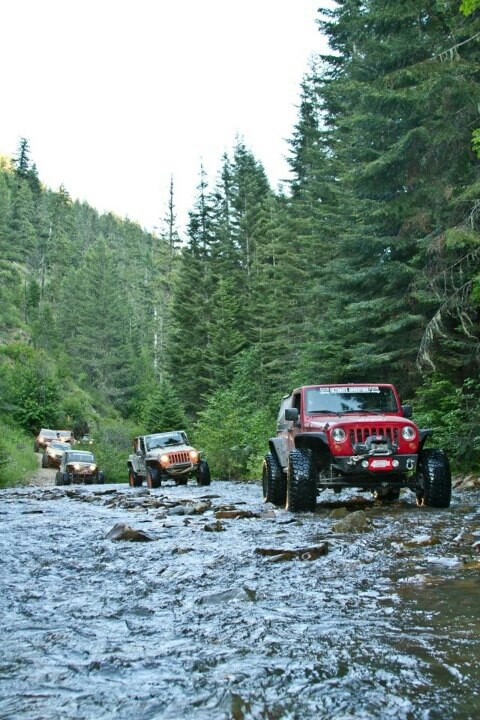 Jeep Wrangler...My mom has one, they are her favorite!! Would be cool to have of these though.