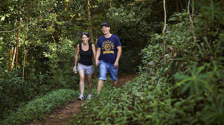 Bush walking through the Norfolk Island National Parks