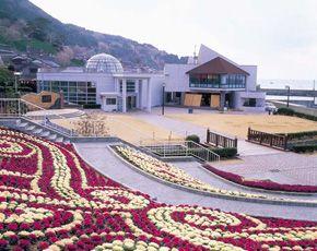 Echizen Daffodil Village Park in Fukui-ken, Japan.