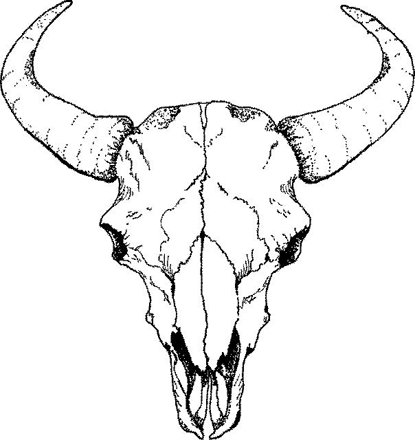 deer skull coloring pages - photo#15