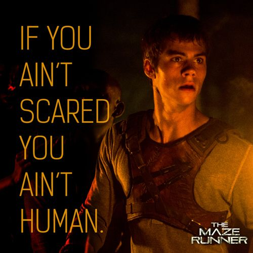 'Maze Runner' promotional images feature quotes from the book-what i love about these books is that the characters don't have perfect vocabulary and don't speak super polite. I mean why would they? They're teenagers right? :P