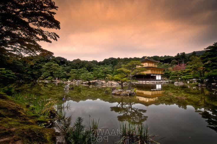 In de tuinen van de Rokuonji tempel staat Kinkanku-ji (gouden paviljoen) met haar volledig in bladgoud bedekte muren. Hier spiegelend in het rustige water van de vijver net voor de zonsondergang. Fine Art op www.zwaanpop.com