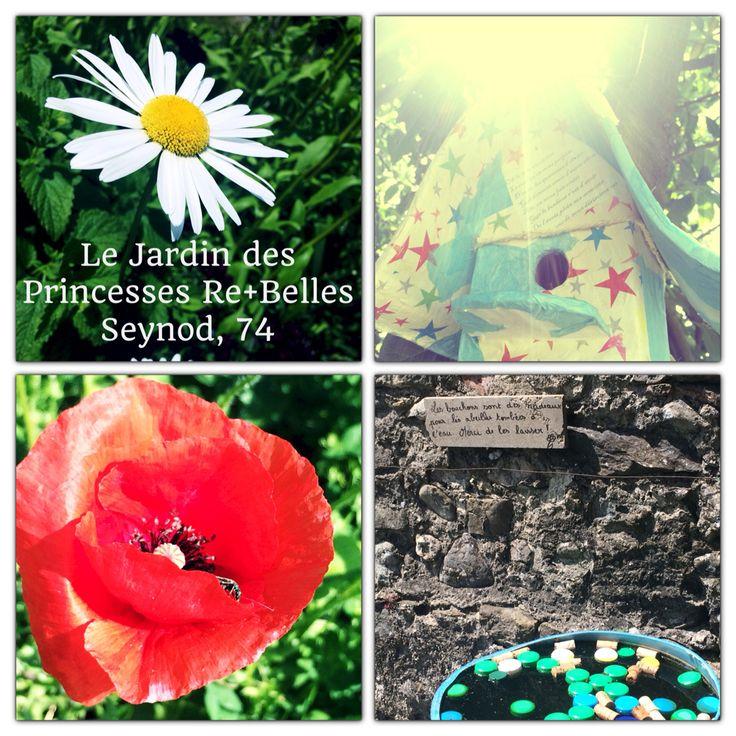 Un dimanche à jardiner avec Laetitia #nature #terre #soleil #fleur #epinard