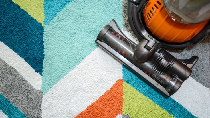 Carpet Bettle