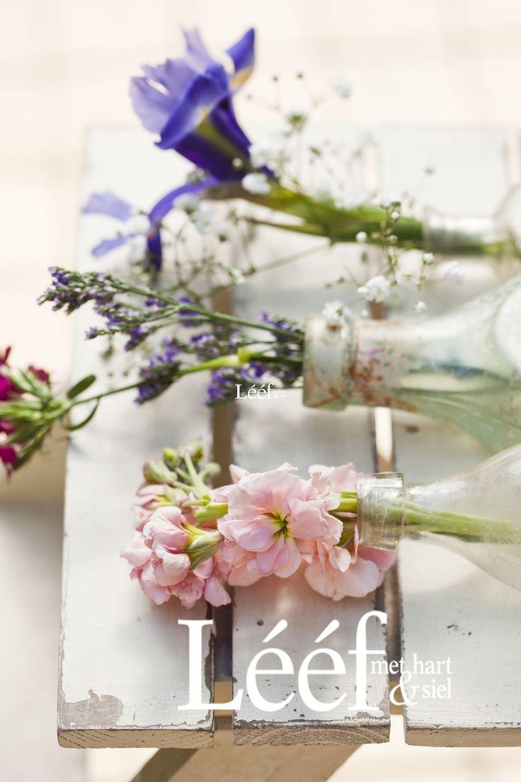 Lente/Spring Fotograaf: Candice Askham www.leef.co.za