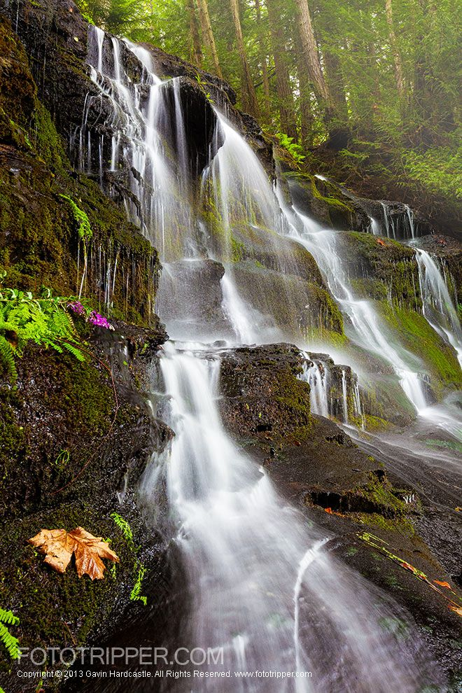 Colliery Dam Falls Photo Tips