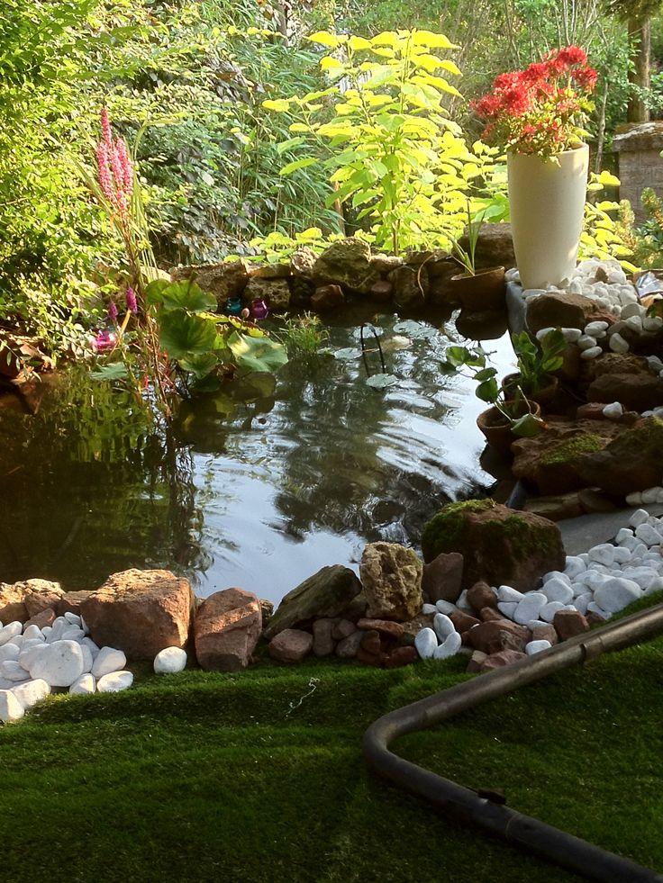 Petit bassin réalisé cet été - Catherine Gacia