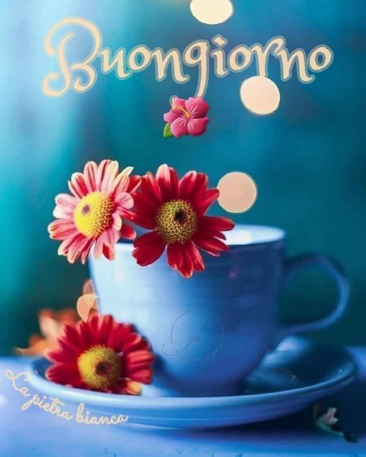 Boungiorno BUONGIORNO'S RISTORANTE,