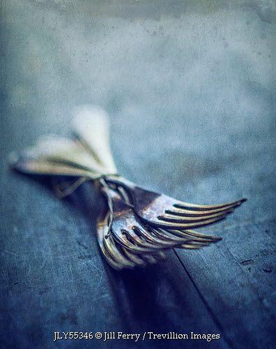 Trevillion Images - old-forks-tied-together