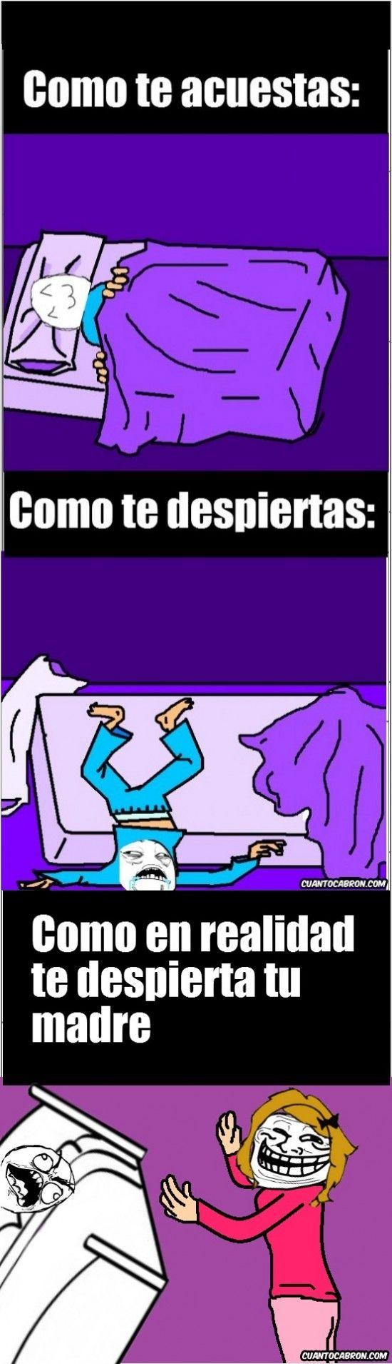 Que placer es dormir...        Gracias a http://www.cuantocabron.com/   Si quieres leer la noticia completa visita: http://www.estoy-aburrido.com/que-placer-es-dormir/
