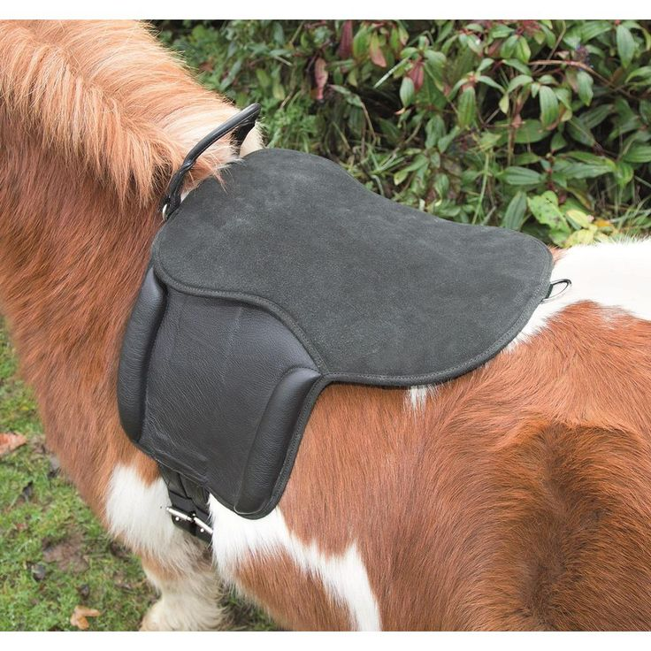 Shires Aviemore PONY Pad//Selle