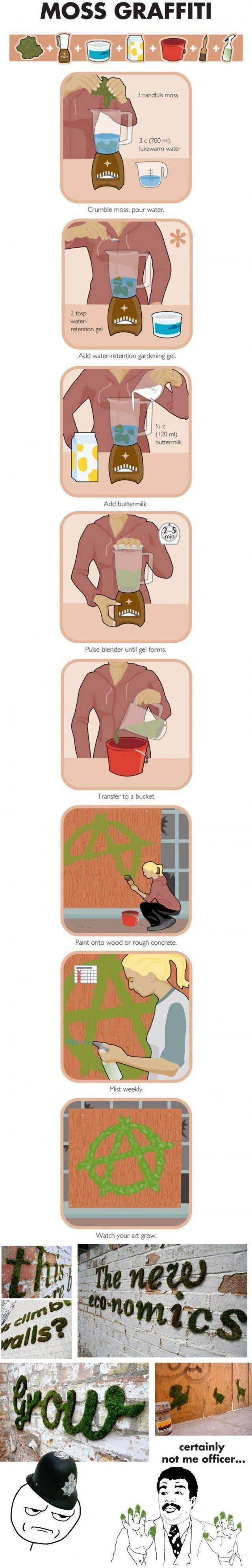 Moss graffiti! #infographic #hack #wall