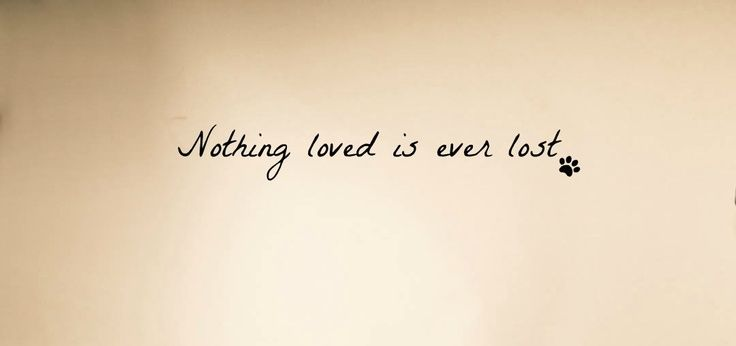 Nothing loved is ever lostDog Paw Tattoo Memorial Tattoo Quotes ...