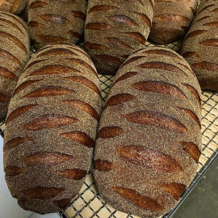 パンコンプレ pain_complet  #bread #Pain #pain_complet by takashi_aizu