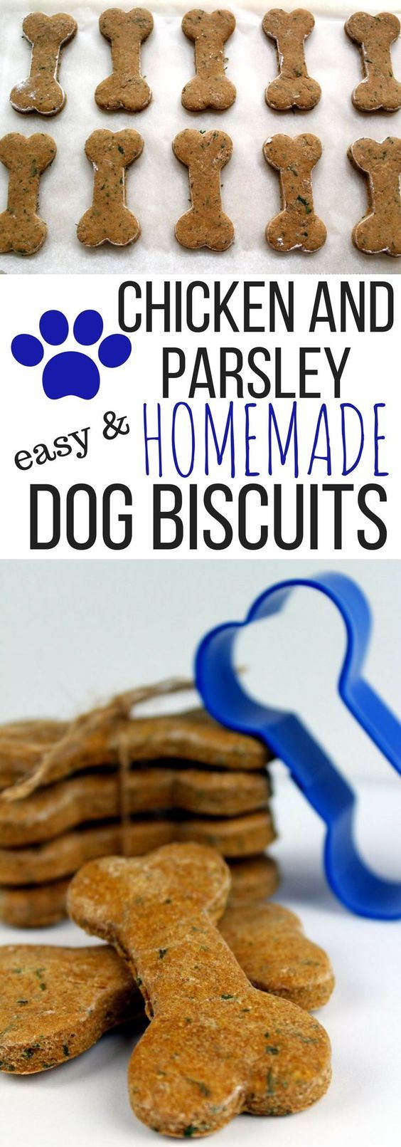 If you are looking for an easy dog biscuit recipe you will love this Chicken and Parsley Homemade Dog Biscuit Recipe. A Healthy Dog Biscuit recipe makes a great easy dog treat.