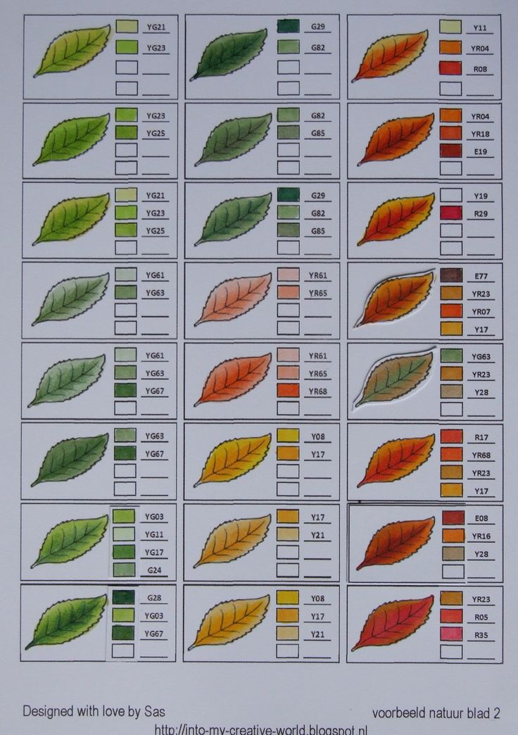 Copic color blends for Leaves