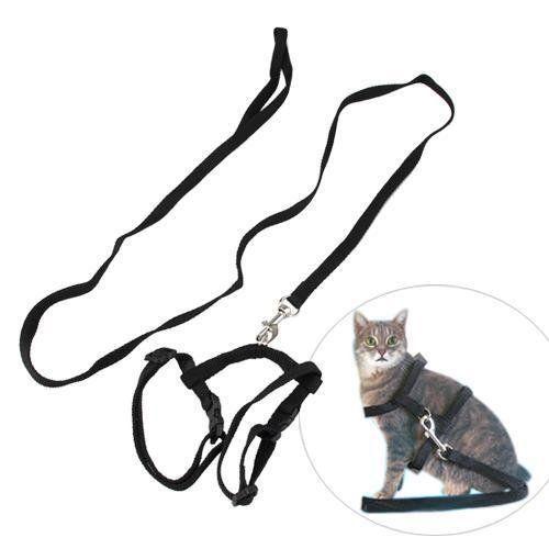 9 besten CAT COLLARS AND HARNESSES Bilder auf Pinterest | Hund katze ...