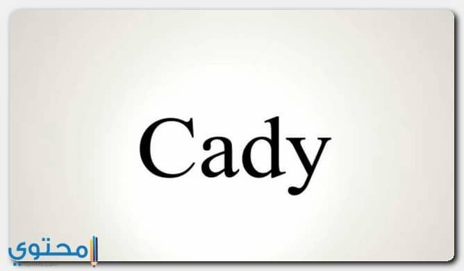 معنى اسم كادي وحكم التسمية Cady معاني الاسماء Cady Kady Home Decor Decals Home Decor Decor