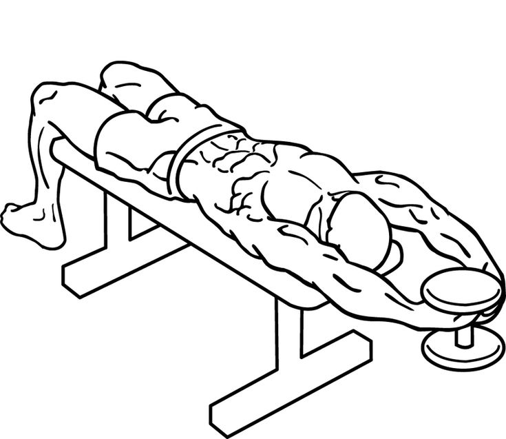 Straight-arm-pullover-2 - プルオーバー (ウエイトトレーニング) - Wikipedia