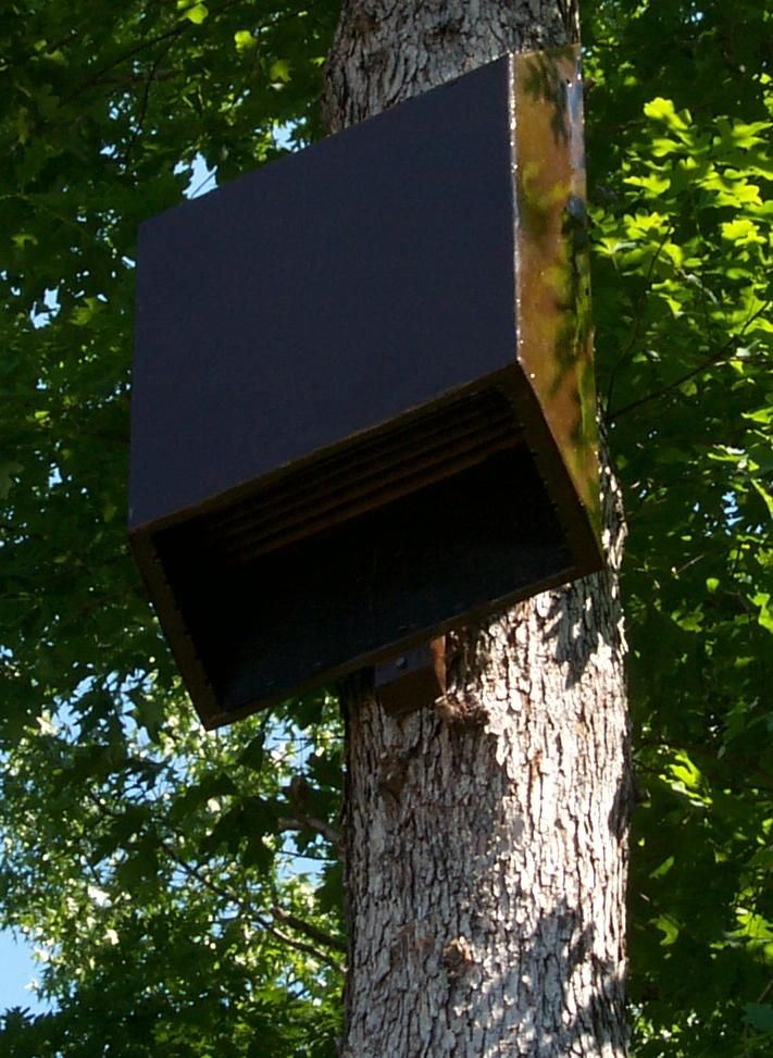 34 best images about bat houses on pinterest the for Bat condo
