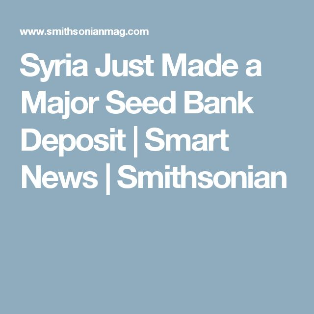 Syria Just Made a Major Seed Bank Deposit      |     Smart News | Smithsonian