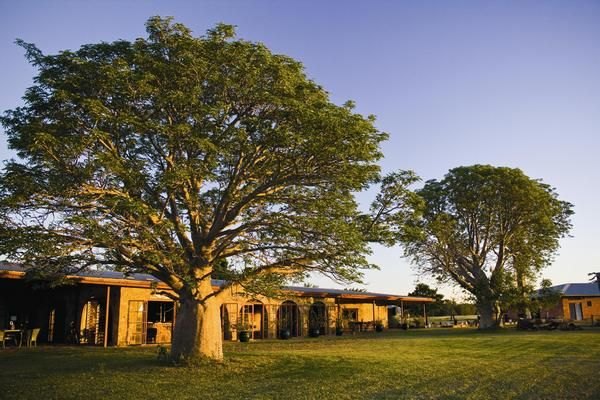 Bullo River Station, Northern Territory