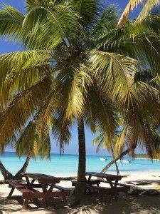 Mesas de piquenique na Ilha Saona, República Dominicana