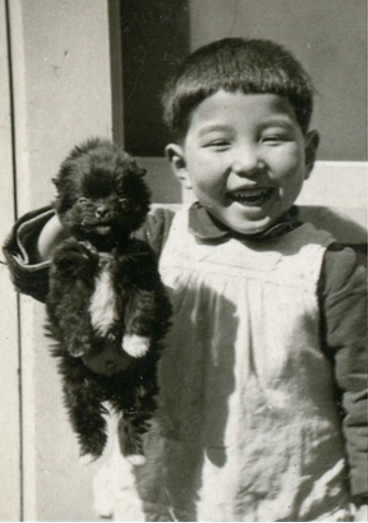 """Hideaki Suzuki, smiling alongside his beloved dog """"Kuma"""" ('bear' in Japanese). Hideaki was twelve years old when the A-bomb hit his home town, Hiroshima. He was in school at the time and got exposed to high-level radiation. He tried to run whilst carrying his younger sister who was burnt by the fires as they lost each other in the chaos. He died seven days later as a result of exposure to radiation."""