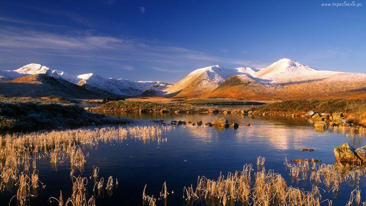 Jezioro, Góry, Ośnieżone, Szczyty, Kamienie, Trawy