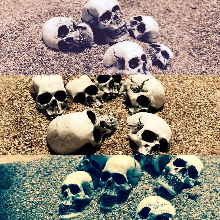 skulls holiday