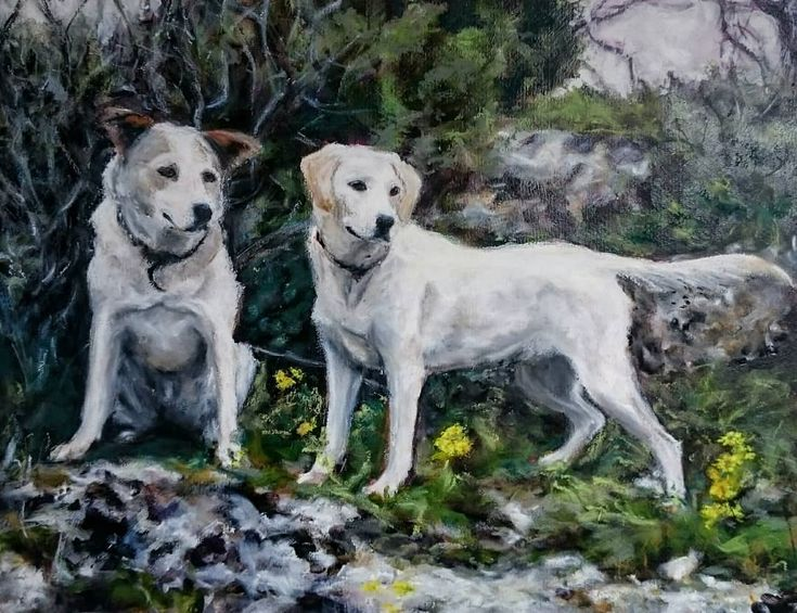 This pair are finished...just in time for tomorrow's Xmas bazaar where I have four animal paintings on display. I'm offering 10% of sales and new commissions to LAWS the local animal rescue charity in whose presentation I am participating.