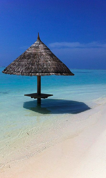 """Did you know that in the Maldives's local language, there are 12 ways to describe the word """"blue""""? 'I can see 12 shades of blue without trying too hard' shade of blue. And if I take a deep breath, the world stands still."""
