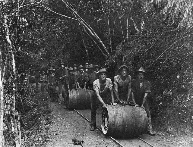 Railway workers pushing barrels of beer along the Cairns to Kuranda railway line, 1911