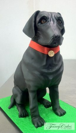 Black Labrador Groom Cake And Labradors On Pinterest