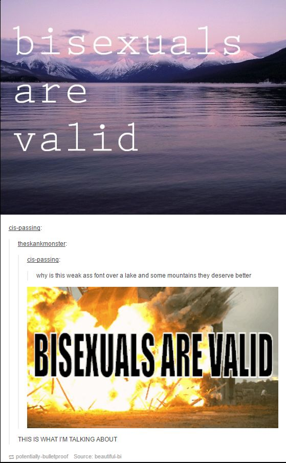 When there were two types of bisexual memes: | 24 Hilarious Photos That Prove There Are Two Ways Of Looking At Things