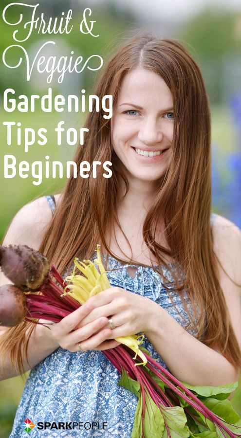 Make this YOUR year to start a garden. Here's our no-brainer guide to making it happen as a beginner.  | via @SparkPeople #spring #gardening #vegetable
